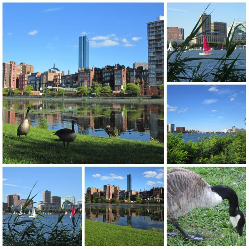 Bostons Public Garden und Charles River