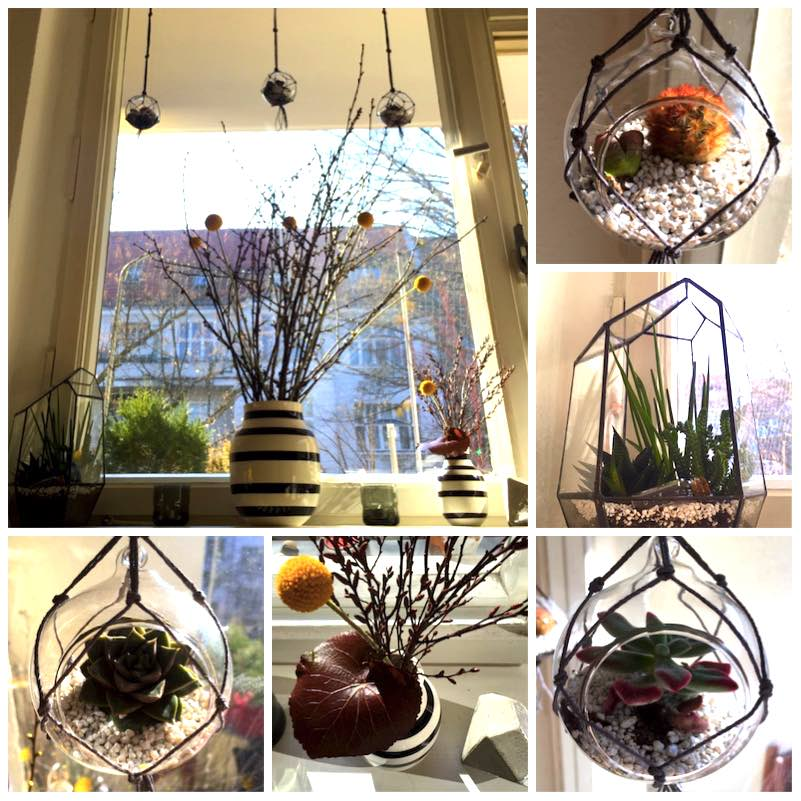 Urban Jungle Bloggers - Hanging Planters4