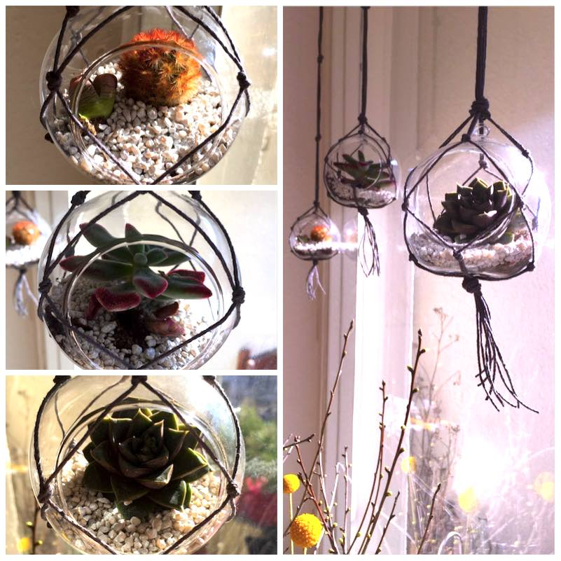Urban Jungle Bloggers - Hanging Planters8
