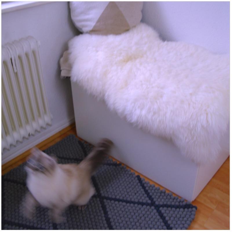Filzkugelteppich - bodenständiger Neuzugang