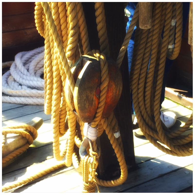 Eine Bootsfahrt, die ist lustig