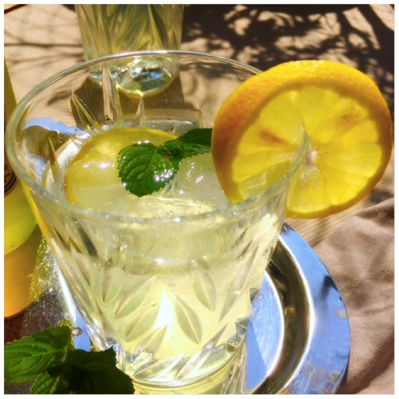 Mint Refreshment - fruktosefreier Minzsirup von eat blog love