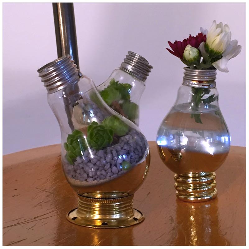 Vasen und Terrarien aus alten Glühbirnen12