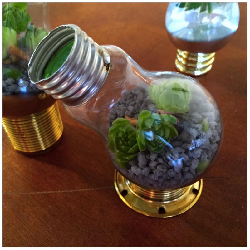 Vasen und Terrarien aus alten Glühbirnen14