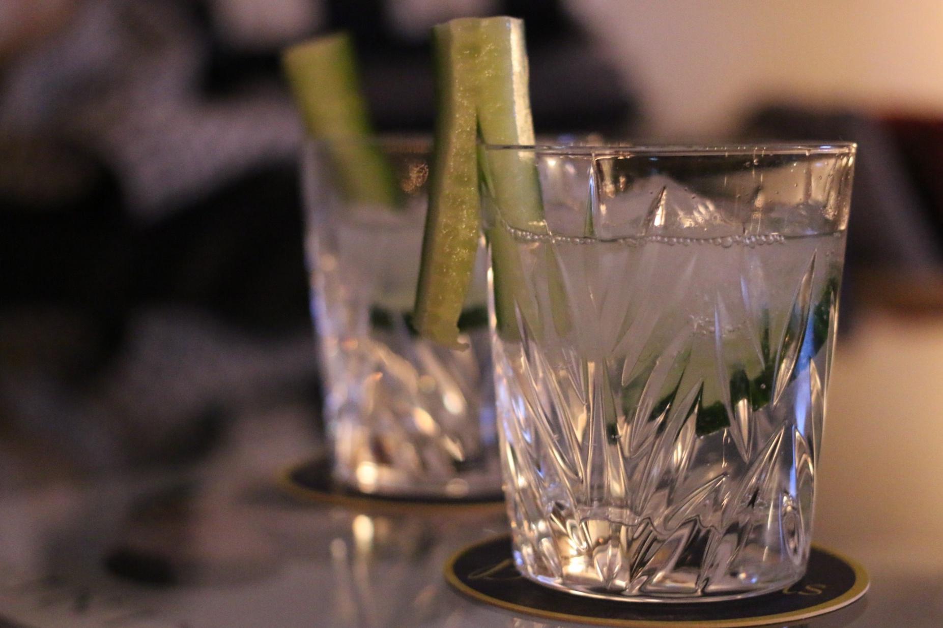 Der Klassiker - Gin & Tonic