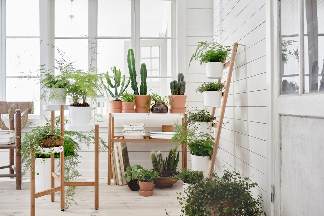 IKEAs Februar-Neuheiten: SATSUMAS & FALSTERBO