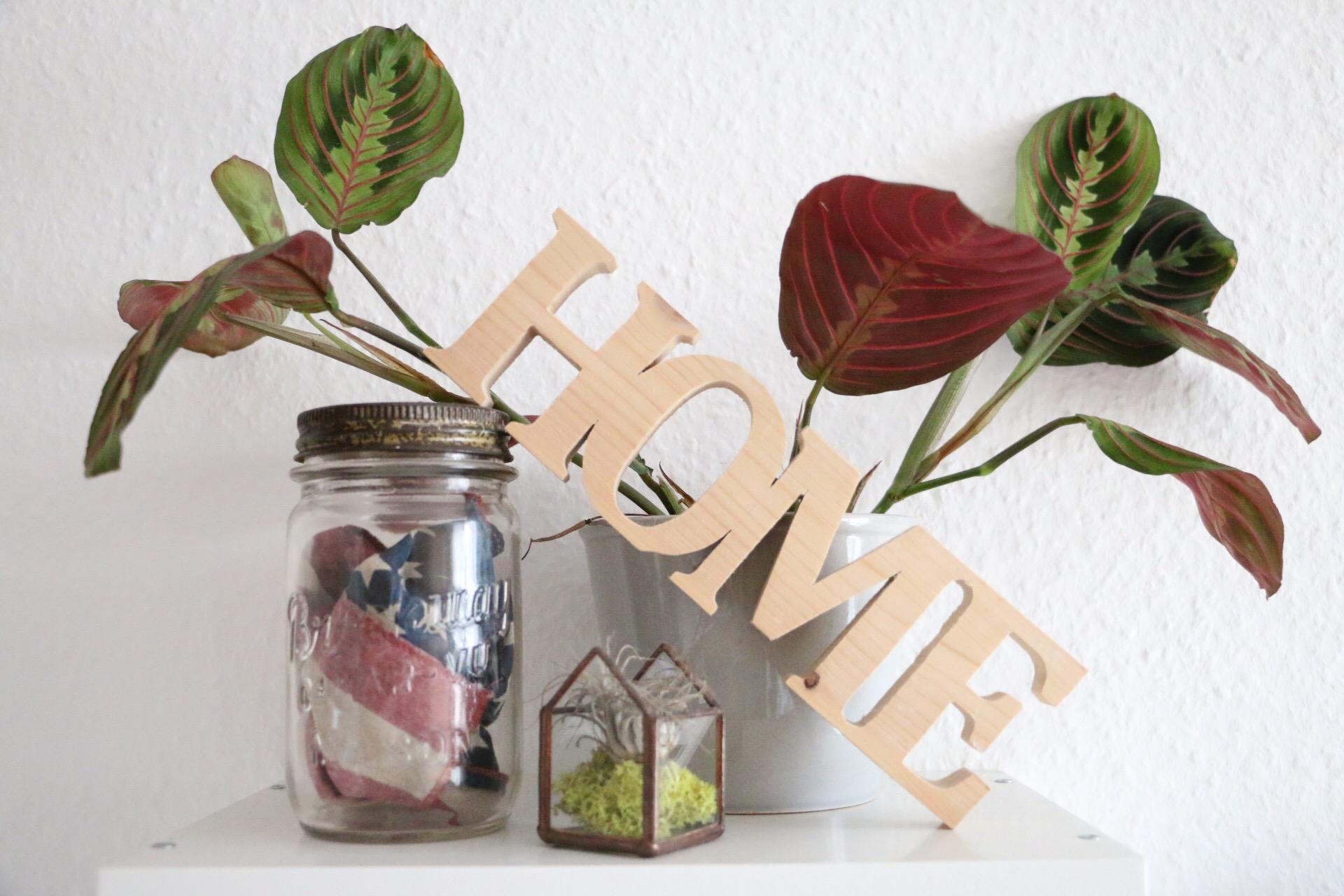 Urban Jungle Bloggers - Kitchen Greens von eat blog love
