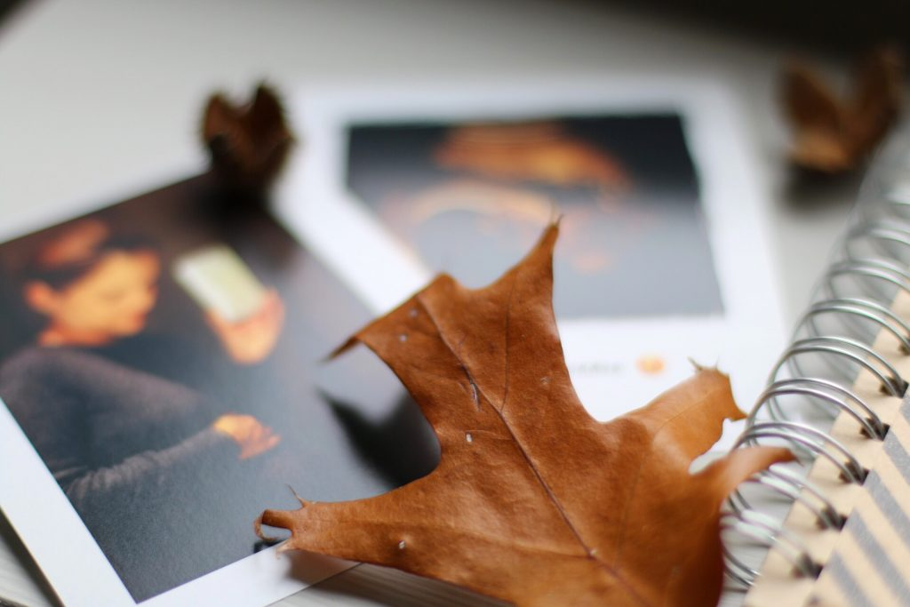 DIY Schwangerschaftsbuch - meine Schwangerschaft in Bildern by eat blog love