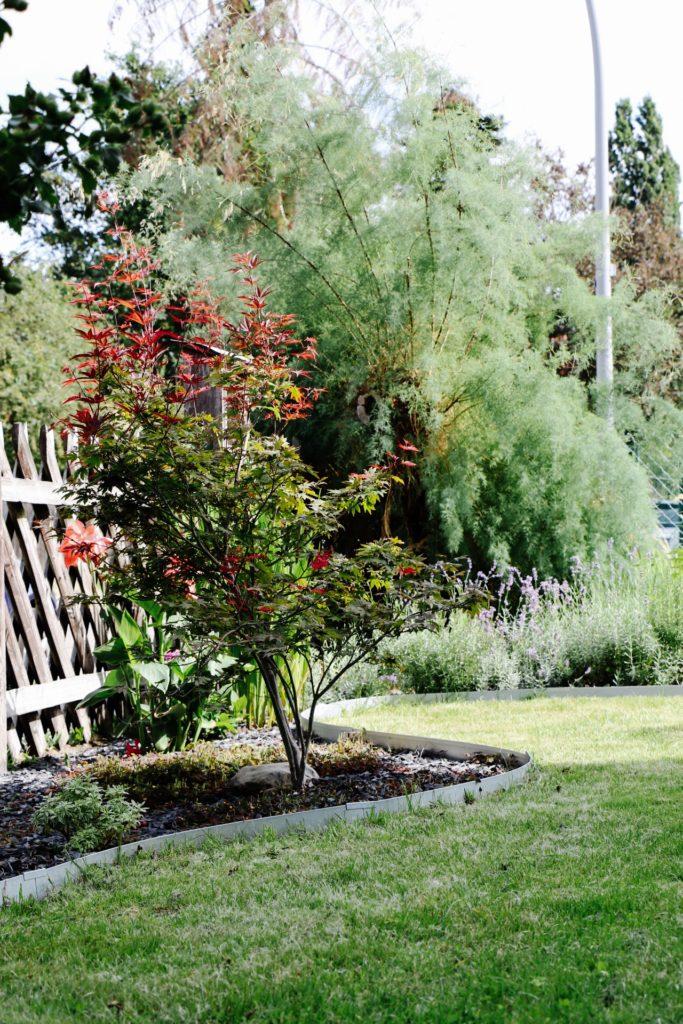 Garden Makeover: Vorher-Nachher unseres Vorgartens by eat blog love_5