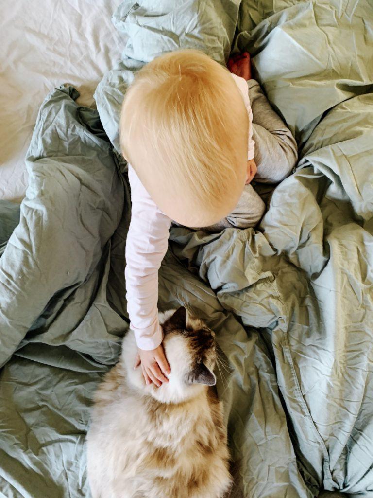 Warum Katzen glücklich machen by eat blog love